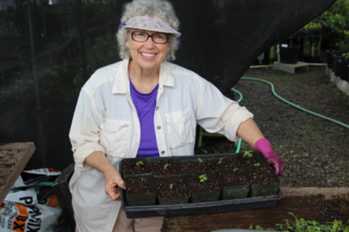 Another tray of seedlings. Photo by J.B. Friday