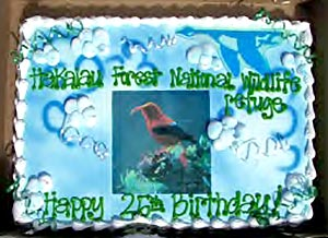 Hakalau birthday cake | Friends of Hakalau Forest