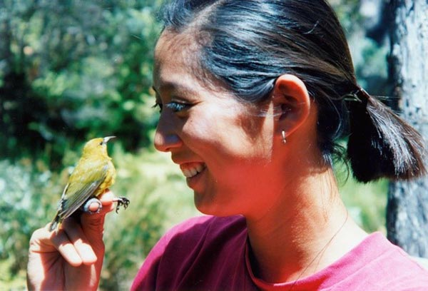 Yvonne with 'amakihi | HawaiI Endangered Birds